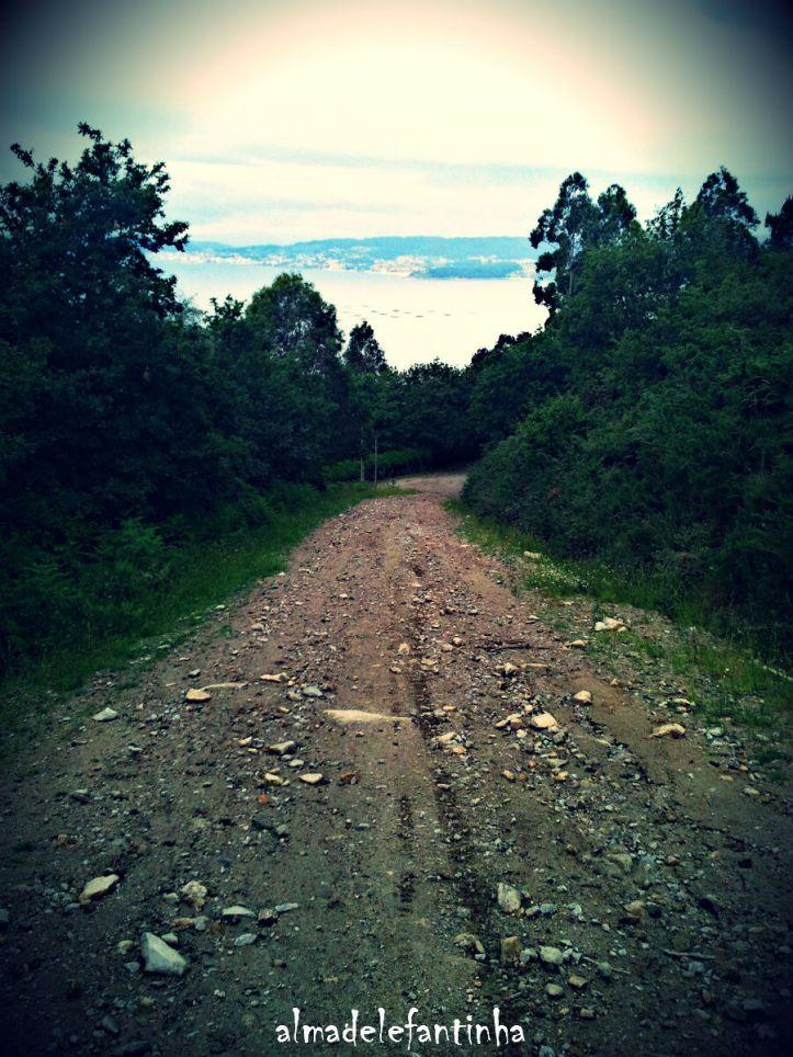 cela camiño de chans _ almadelefantinha_wrd