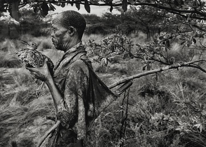 Bushmen, Botswana, 2008