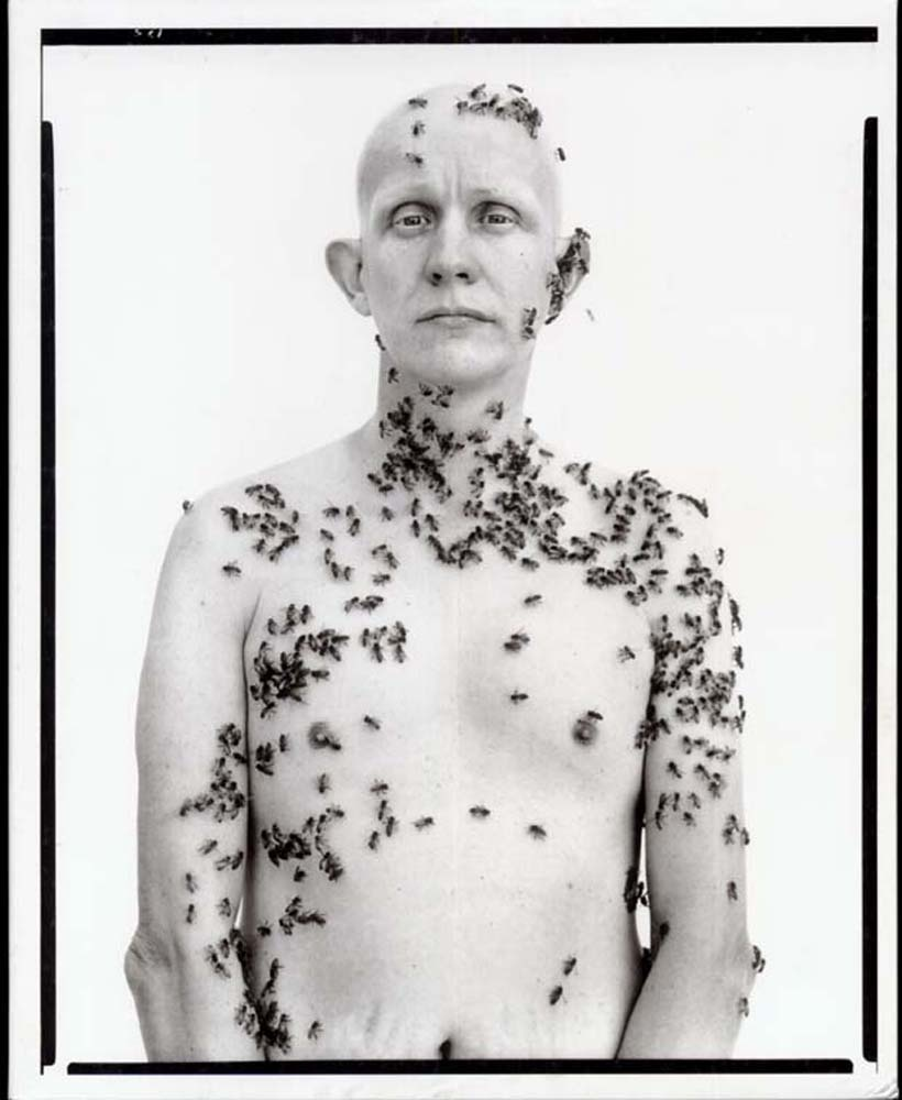 In the american west avedon_beekeeper-ronald fischer, beekeeper, davis, california, 1981