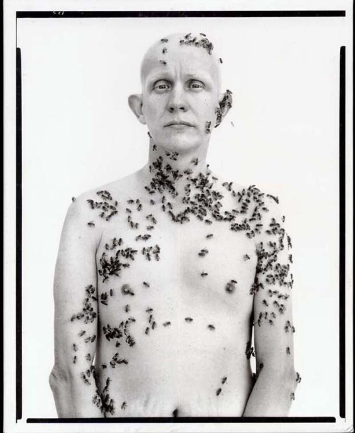 In the american west avedon_beekeeper-ronald fischer, beekeeper, davis, california, 1981