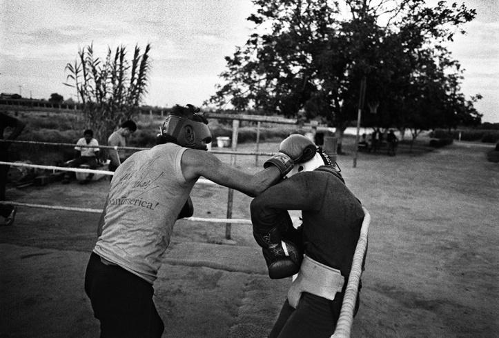 Robert Frank boxers